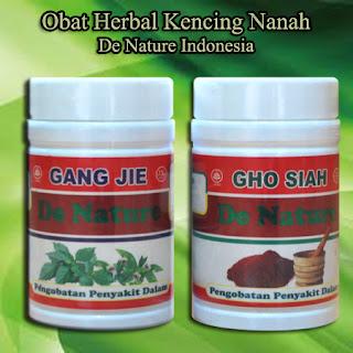 Obat Herbal Untuk Kencing nanah