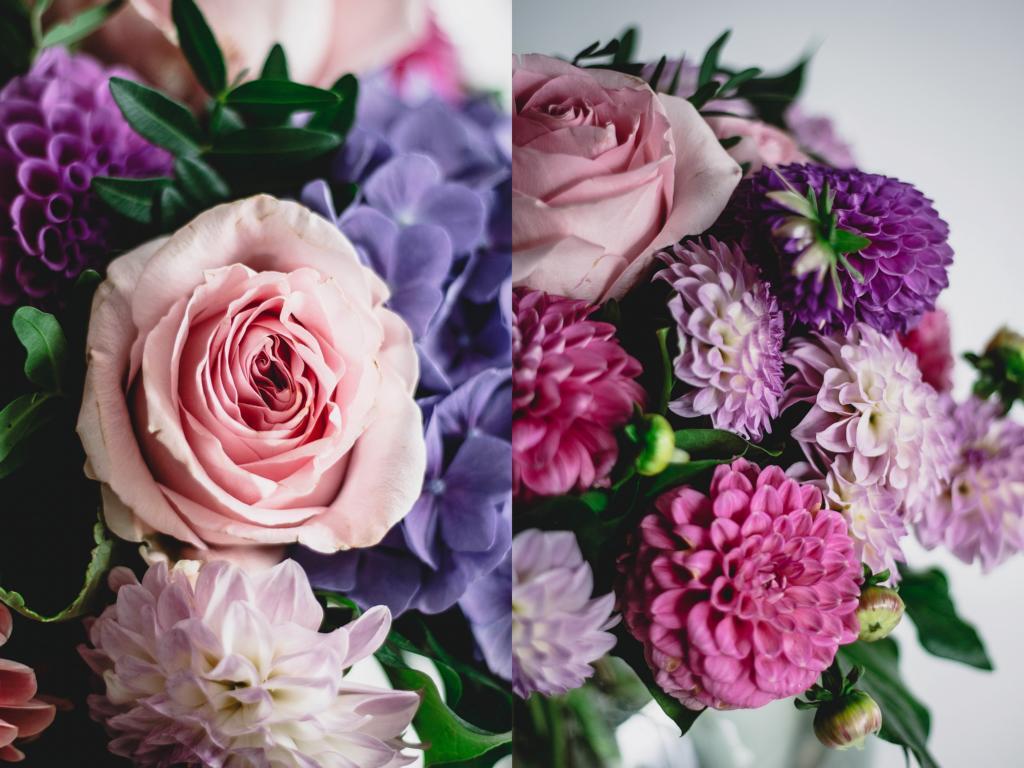 Nahaufnahme Rose und weitere Blüten