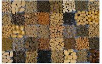 aplikasi silica gel biji-bijian