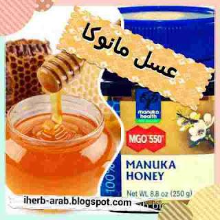افضل انواع عسل مانوكا الاصلي واسعاره وفوائده من اي هيرب