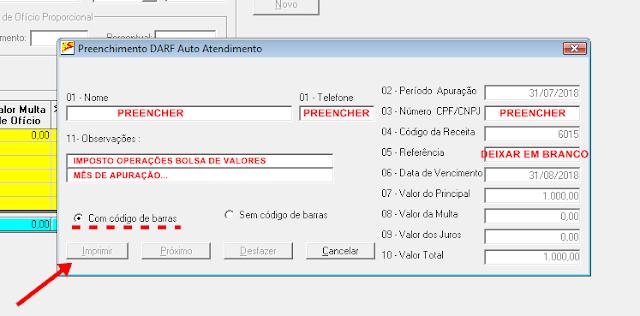 DARF 6015 como preencher