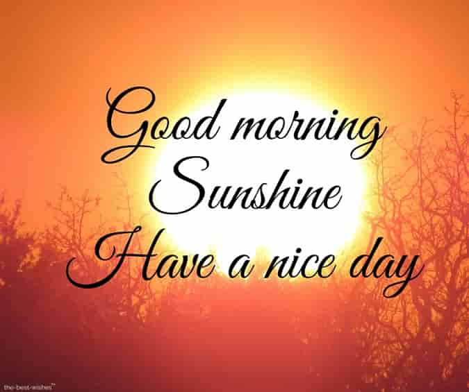 good morning sunshine have a nice day