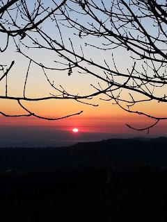http://pimikiallaricettadellaformulaperfetta.blogspot.com/2019/01/corbiolo-tanto-amata.html
