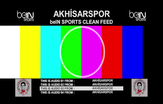 Turkey Cup  Biss Key AzerSpace 1/Africasat 1A 23 January 2019