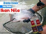 Aroma Essen Yang Disukai Ikan Nila Dijamin Strike