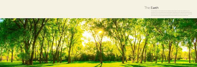 The Hermitage Park Zirakpur- Chandigarh 2 BHK Flats and 3 BHK apartments. The Hermitage Park The Hermitage Park, The