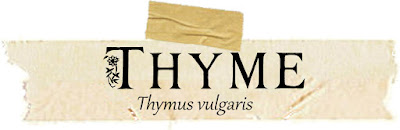 Magical and Medicinal Uses of Thyme. Includes FREE BOS page!