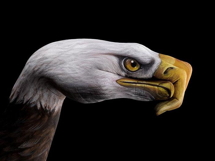 amazing-body-Eagle