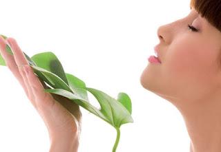 olores correspondientes a un estado feliz en el ambiente