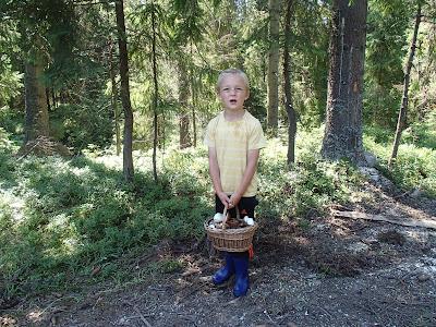 grzyby 2017, grzyby w lipcu, dzieci na grzybobraniu, grzyby na Orawie