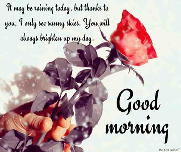 the most beautiful love good morning messages to my wife with red rose