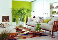 Diseño de interiores natural con aromas