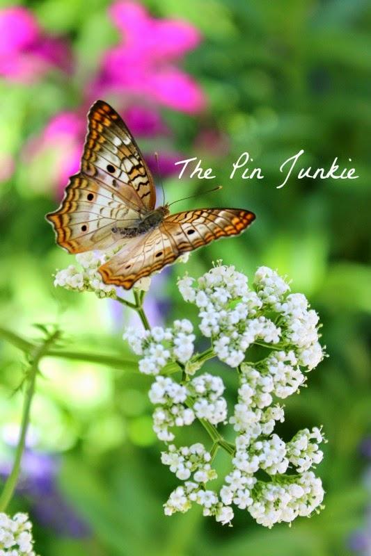 http://www.thepinjunkie.com/2014/06/butterflies.html