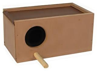 Periquito Australiano - Tudo sobre periquitos está aqui.: O ninho