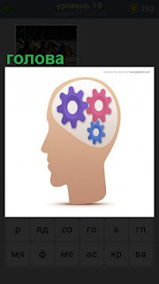 шестеренки крутятся как мысли в голове, макет головы