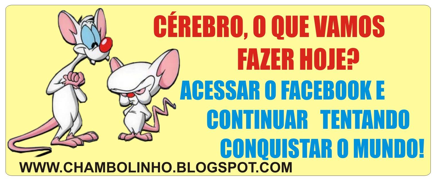 Recadinho De Humor Pra Facebook Pink E Cérebro Chambolinho Recados