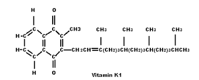 FAT-SOLUBLE VITAMINS. VITAMIN K