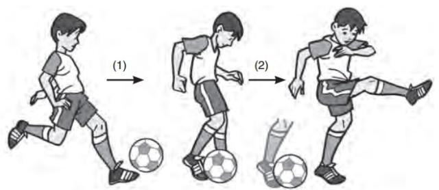 Macam Macam Teknik Dasar Menendang Bola Dalam Permainan Sepak Bola