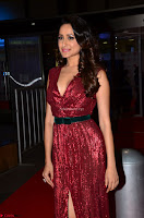 Pragya Jaiswal stunning Smiling Beauty in Deep neck sleeveless Maroon Gown at 64th Jio Filmfare Awards South 2017 ~  Exclusive 053.JPG