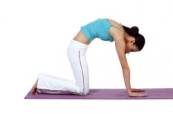 stuff according to anais easy yoga poses for beginners