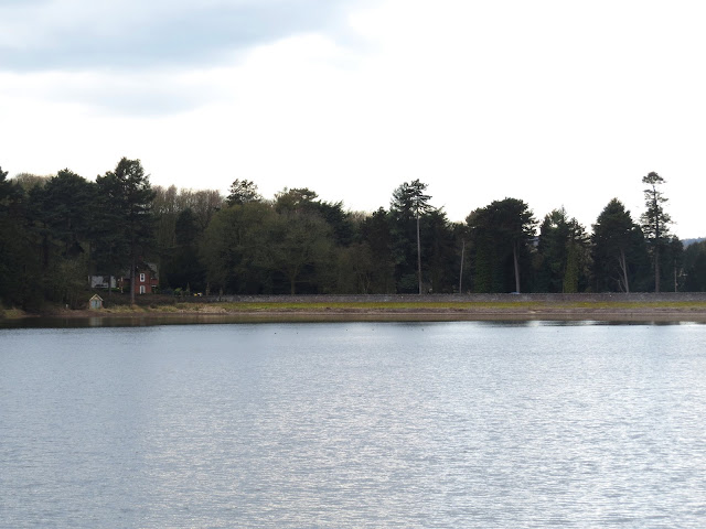 Swithland Reservoir, Leicestershire