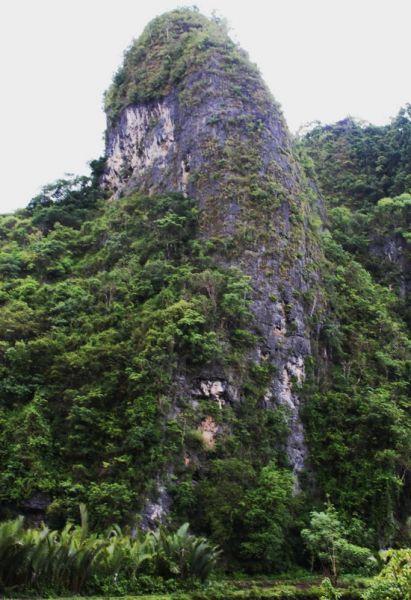 Hutan Batu Terbesar & Terindah Kedua Ada di Indonesia | Noozzland's Blog