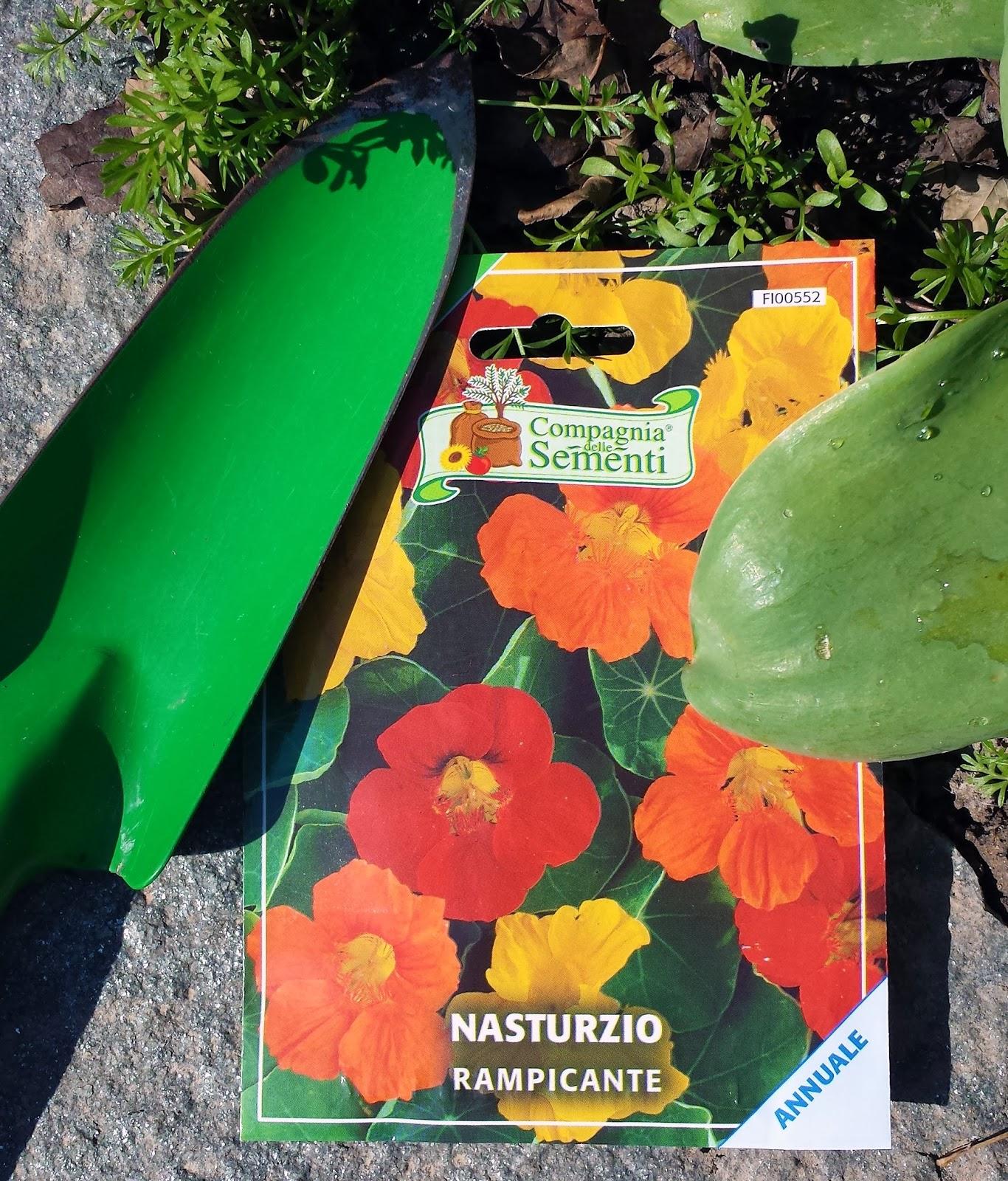 Giardino Cosa Piantare A Febbraio: Il Piccolo Giardino Di L.: Febbraio 2014