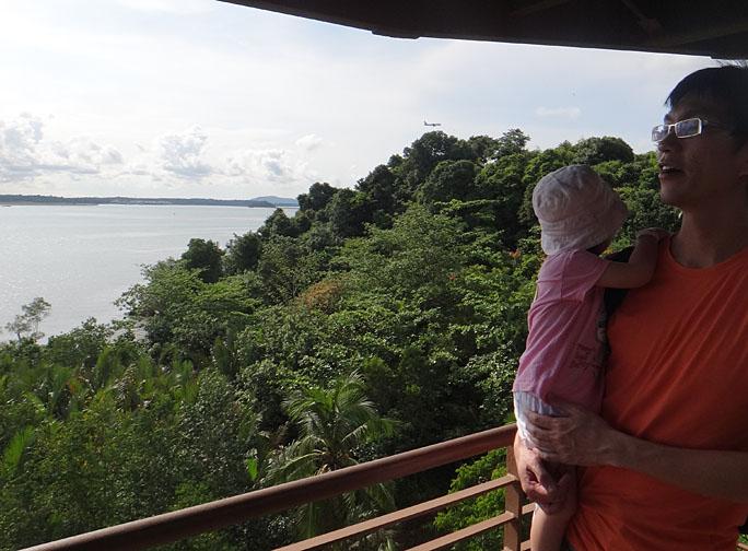 wild shores of singapore: First Naked walk at Chek Jawa in