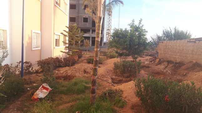 استياء ساكنة بعد اقدام مواطن على بناء حديقة عمومية بأكادير