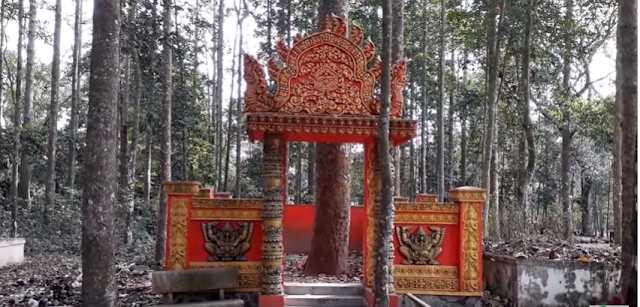 Bí ẩn ngôi nhà thờ cây cổ thụ ở chùa Dơi (Sóc Trăng)