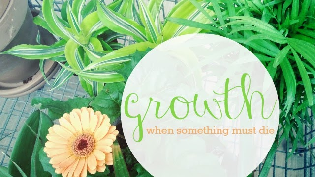 Growth // when something must die