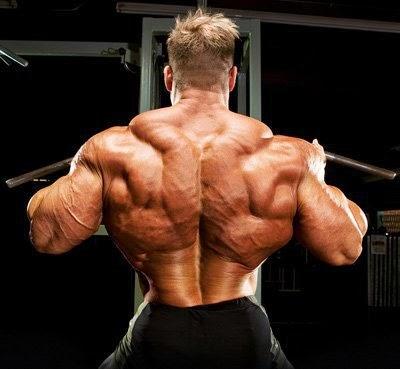 تمارين عضلات الظهر جاى كتلر