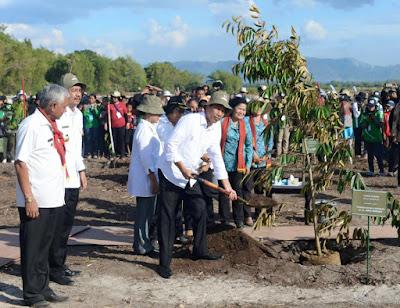 Presiden Joko Widodo Menanam pohon di Kebun Raya Samosir