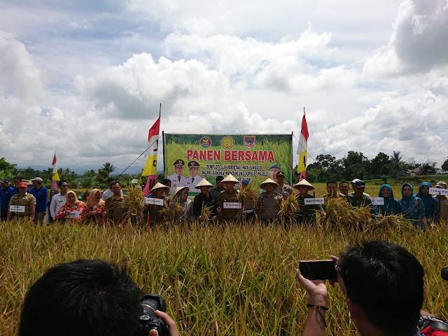 Walikota Targetkan Pagaralam Menjadi Lumbung Pertanian