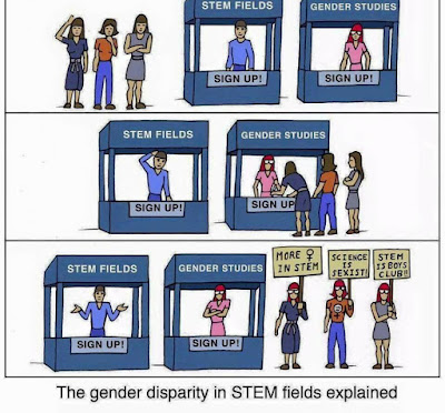 Gender Disparity in STEM Field Explained