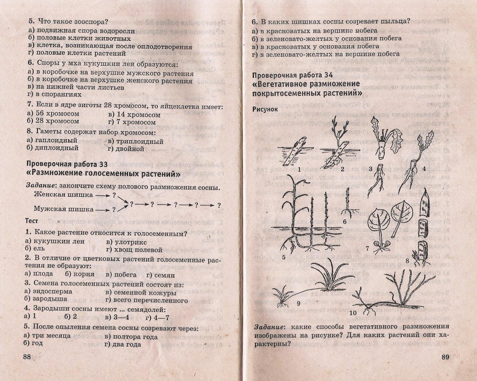 Тесты по биологии гекалюк 7 класс скачать бесплатно