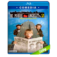 Mi pobre angelito 2: perdido en Nueva York (1992) BRRip 720p Audio Dual Latino-Ingles