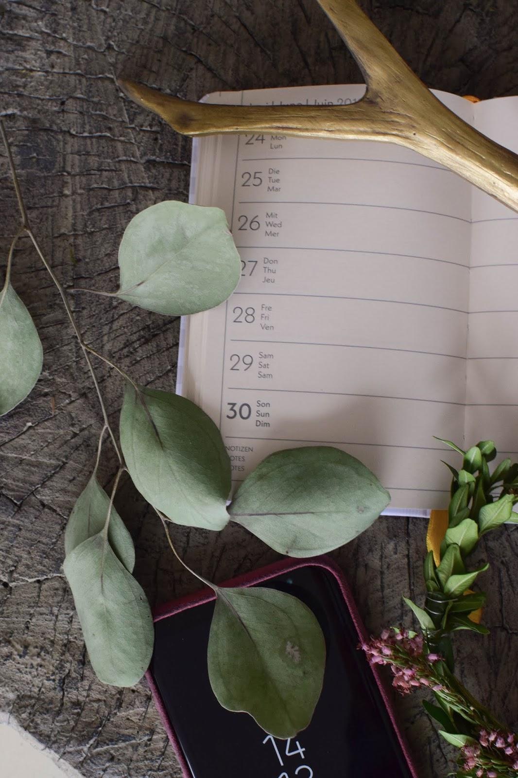 Gut organisiert mit Terminplaner Kalender 2019 von teNeues