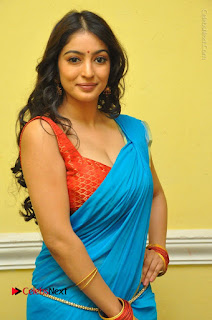 Telugu Actress Vaibhavi Stills in Blue Saree at Www.Meena Bazaar Movie Opening  0035.JPG