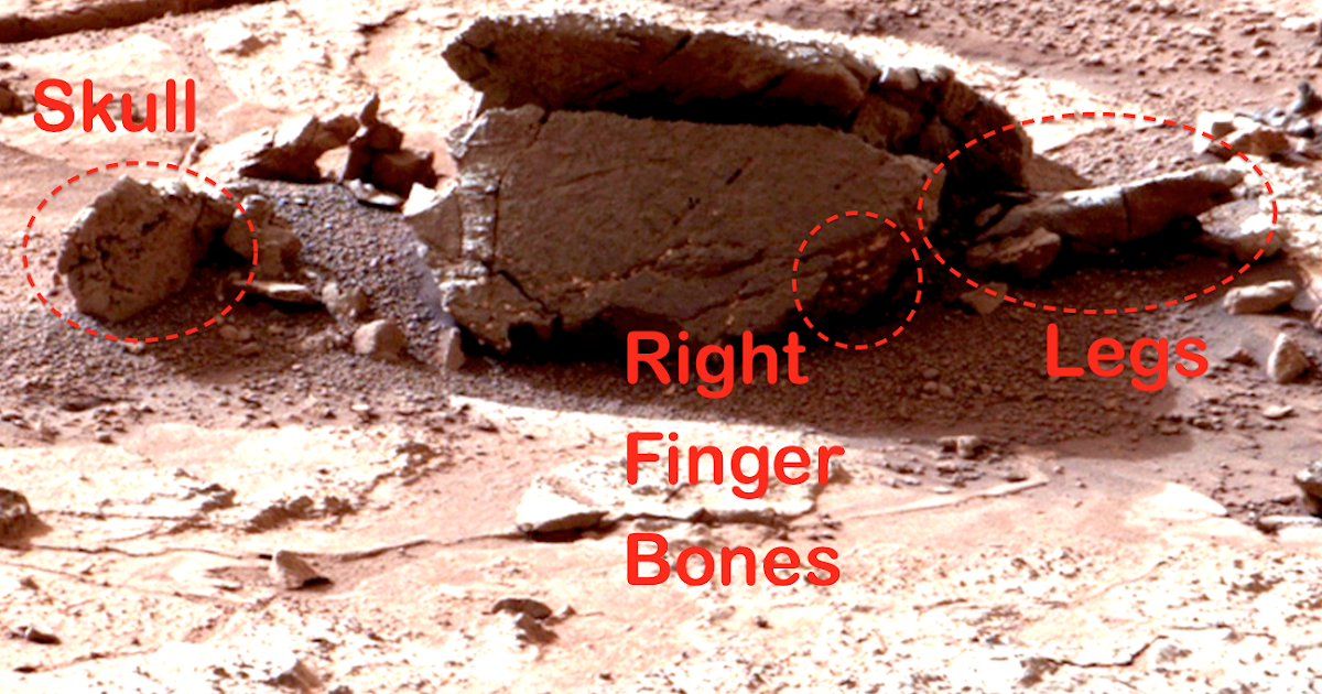 mars rover discovery -#main