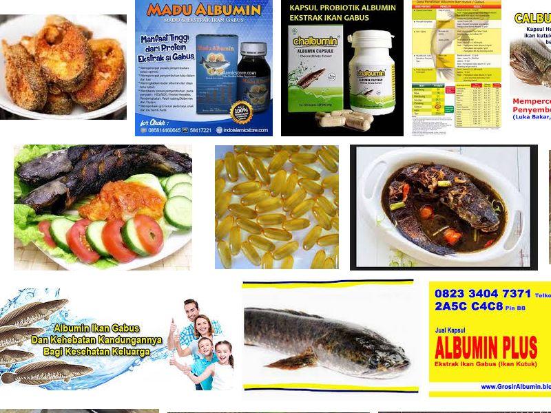 Manfaat Ikan Gabus Untuk Ibu Hamil