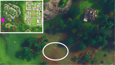 Fortnite, Skeet Shooting Location, Clay Pigeon Location, Pleasant Park, Map