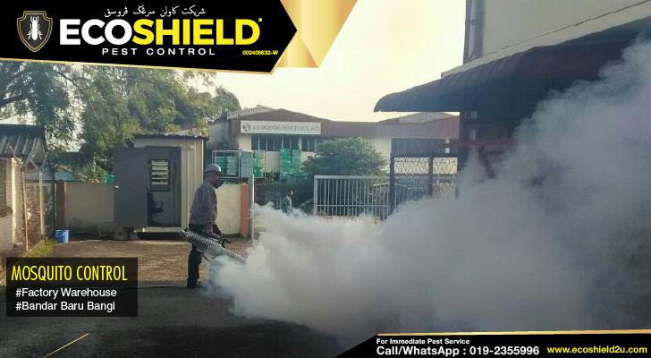 Pest Control Selangor | Pest Control Bangi