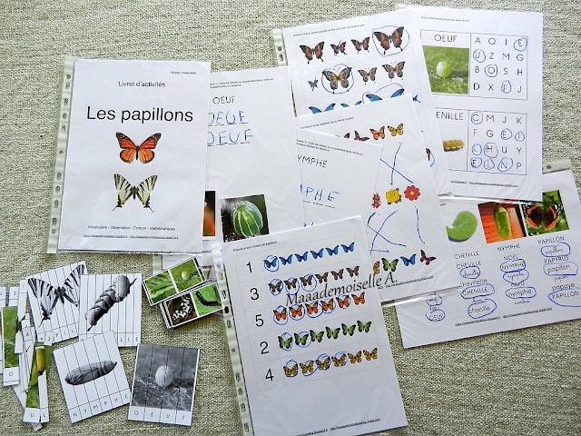 || Nos activités sur les papillons : Livret d'activités Maaademoiselle A. Shop
