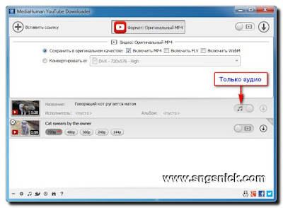 MediaHuman YouTube Downloader - Загрузка только аудио