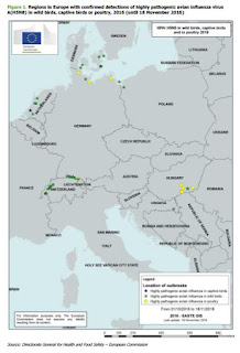 http://ecdc.europa.eu/en/publications/Publications/risk-assessment-avian-influenza-H5N8-europe.pdf