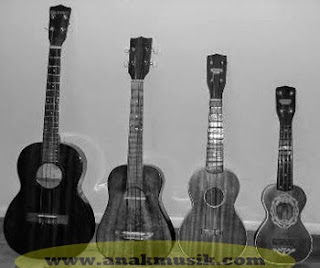 Jenis-Jenis Model Gitar (Ukulele) Yang Perlu Kamu Ketahui