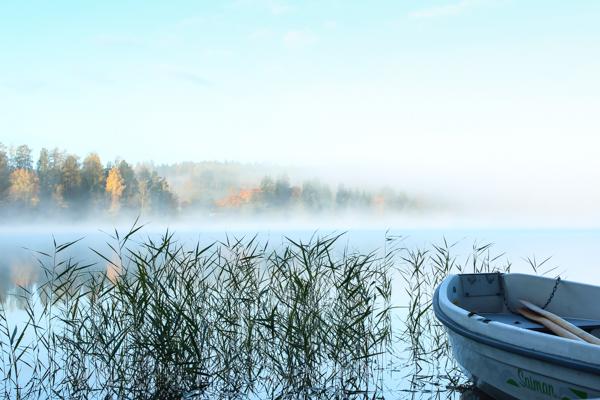 ruska etelä-suomi järvenranta