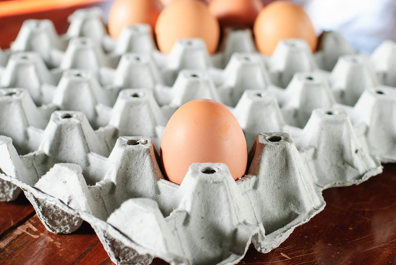Kalau Tuhan Maha Kuasa, mampukah Tuhan memasukkan seluruh alam semesta ini ke dalam telur ayam?