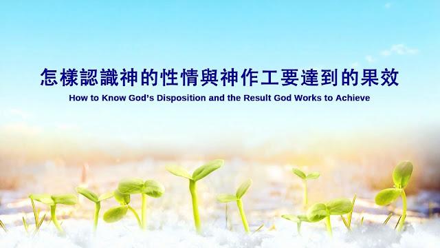 全能神 | 全能神教會 | 東方閃電 |神的話語圖片